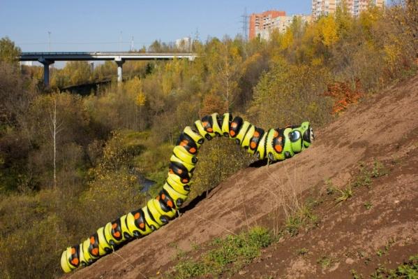 Гусеница Александра Жунева должна показать пермякам, как сложно убирать мусор с малых рек, который они туда закидывают