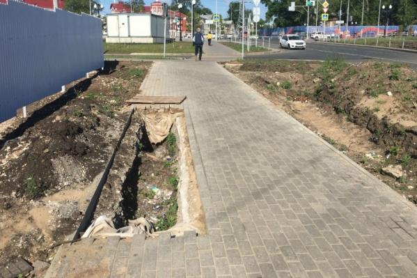 Местные жители предложили замаскировать дыру