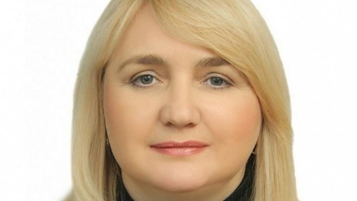 У Ростова-на-Дону новый главный казначей