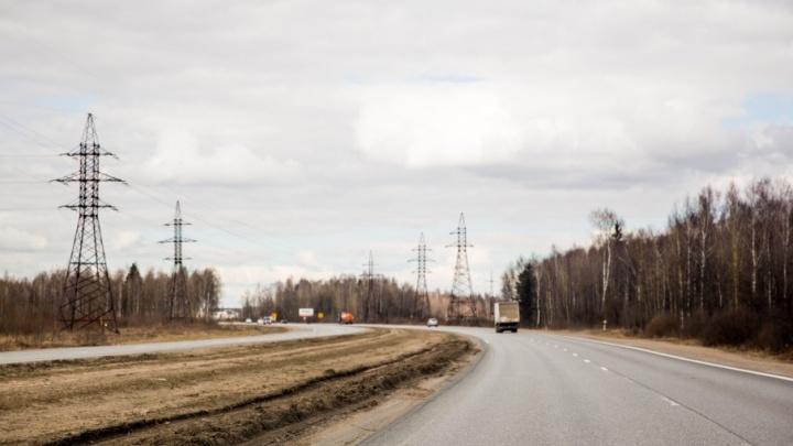 Под Ростовом лось кинулся под машину: травмы получил водитель