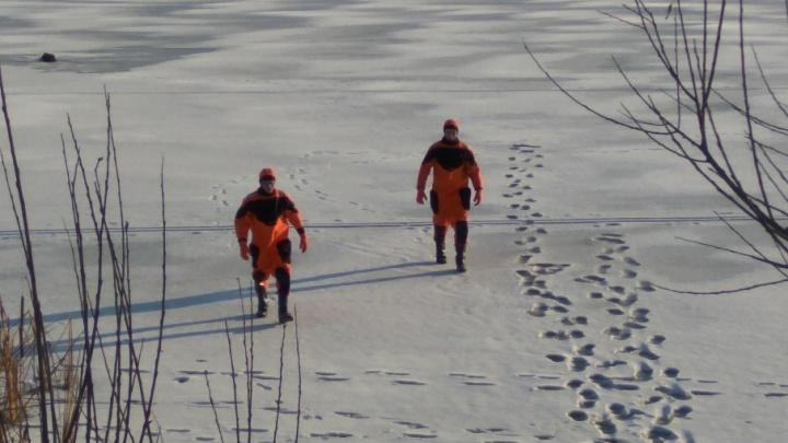 Бдительный тюменец вызвал на озеро сотрудников ТОСЭР спасать мусор