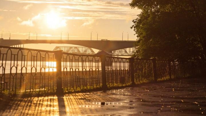 Бабье лето в Ярославле: синоптики рассказали о погоде на выходные