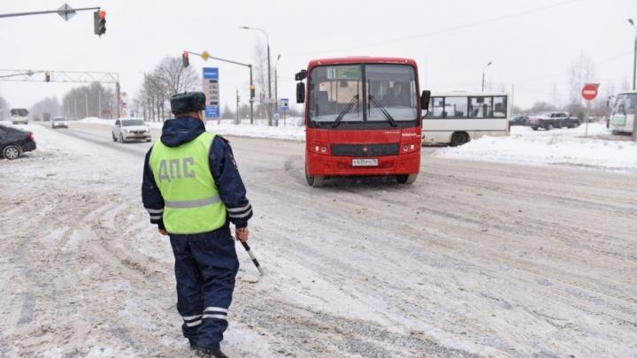Попались даже красные: в Ярославле нарушает ПДД каждая вторая маршрутка