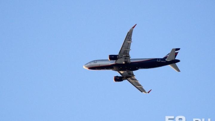 Житель Сочи потребовал от «Аэрофлота» миллион рублей из-за слишком шумной еды