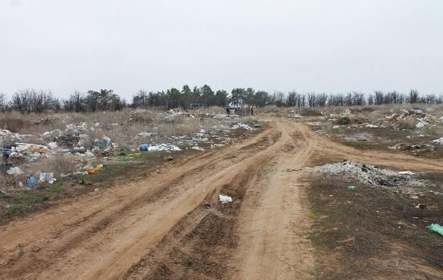 В Волгограде студентов ВолГУ выведут на уборку мусора с Лысой горы