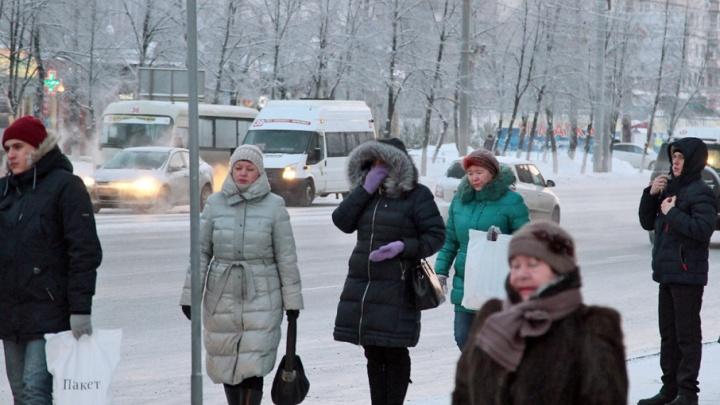 Через тернии к «Звёздному»: жители микрорайона под Челябинском часами ждут маршрутку