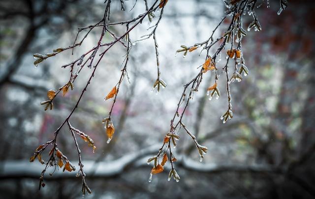 Мокрый снег, дожди и сильный ветер надвигаются на Южный Урал