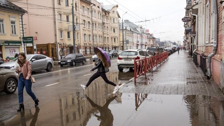 Холодно и пасмурно: синоптики рассказали о погоде в Ярославле в первые дни лета