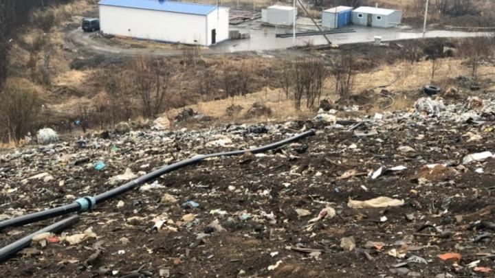 Будет вам экологическая безопасность: власти успокаивают ярославцев, возмущённых московским мусором