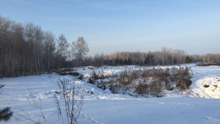 На землях, арендуемых тюменской агрофирмой «КриММ», нашли большую свалку