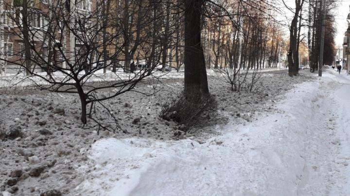 Сказ о безопасном реагенте: в Ярославле грязный снег с дорог тает на газонах