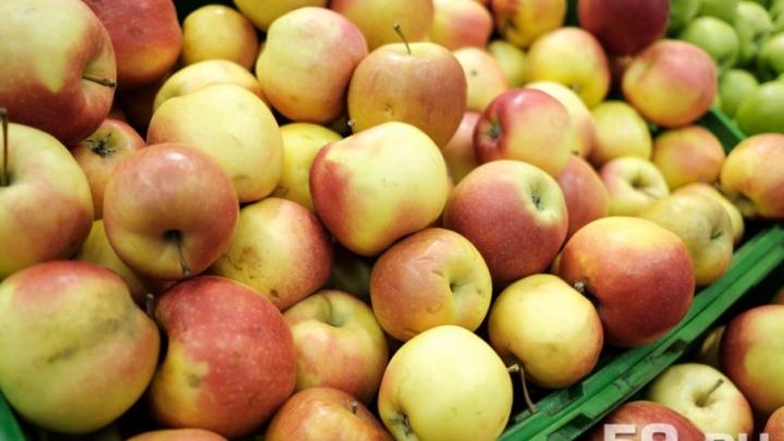 Ученые против мифов: какие витамины содержатся во фруктах и где можно найти «настоящие» бананы