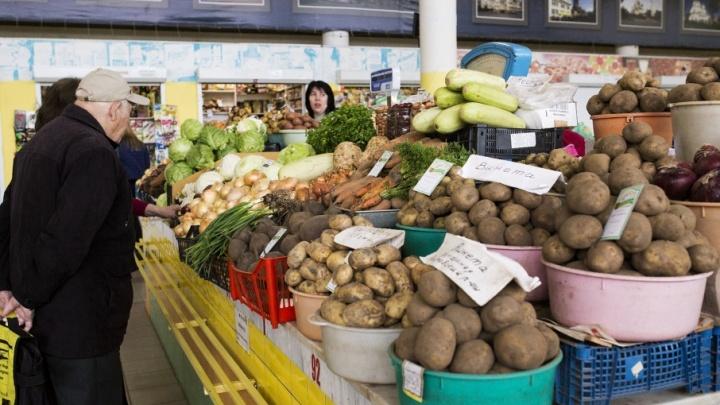 Зимой будем сыты: в Ярославской области собрали богатый урожай зерна и картошки