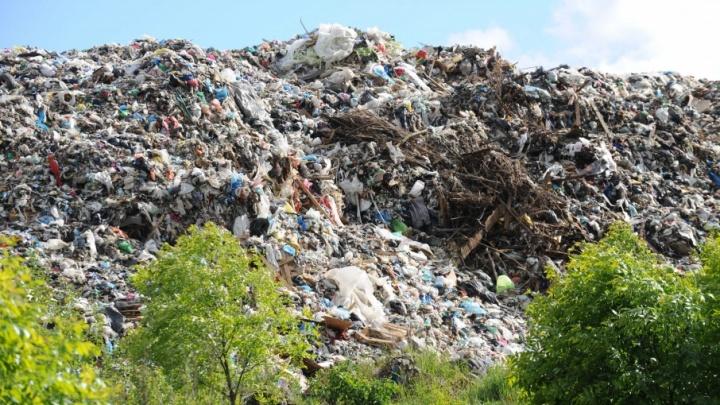 Губернатор посмотрел, как полигон «Скоково» заваливают московским мусором