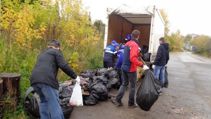 Очистили экотропы и места отдыха: из пермских лесов вывезли пять грузовиков мусора