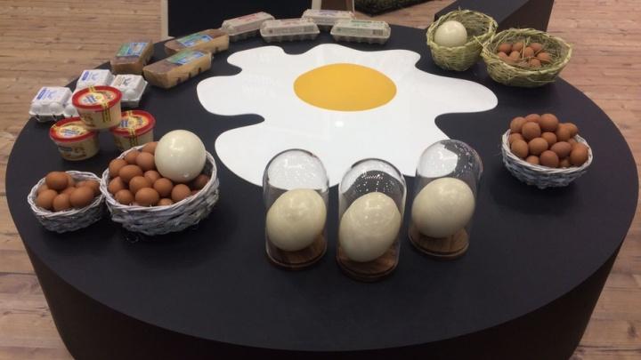 Русалки для губернатора и гигантская картошка: в Ростове стартовал форум продовольственной безопасности