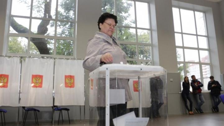 «Проведут сутки на участке»: в Прикамье за выборами будут следить три тысячи общественных наблюдателей