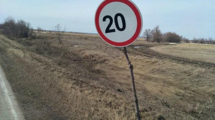 В Самарской области дорожные знаки установили на срубленных ветках