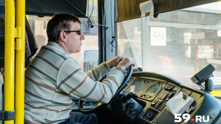 Количество маршруток из Закамска увеличат, а автобусы № 19, 59 и 62 будут ездить до остановки «Власова»