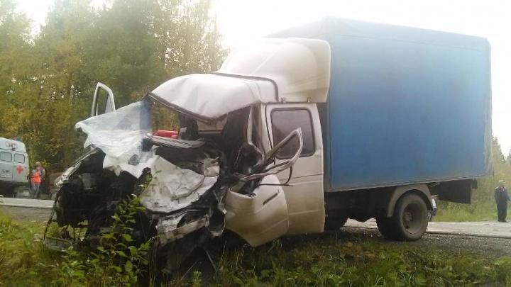 Водитель «Газели» получил 2,5 года колонии за смертельную аварию на трассе Соликамск — Красновишерск