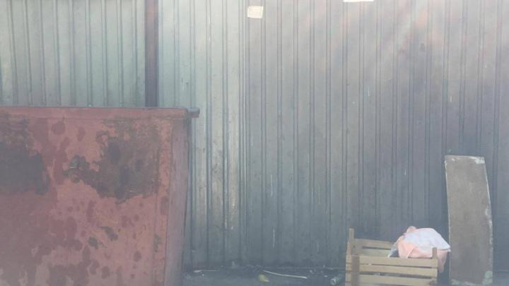 В мусорном баке в Челябинске нашли новорожденную девочку