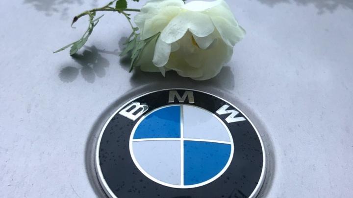 У владельца популярных ночных клубов Ярославля арестовали дорогой BMW