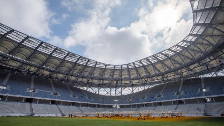 Главного контролера стадиона «Волгоград Арена» оштрафовали за нарушения