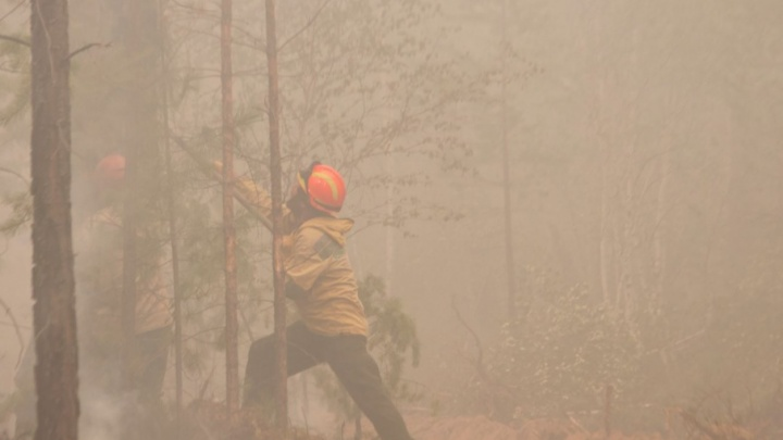Пожары в Волгоградской области тушат элитные пожарные-десантники