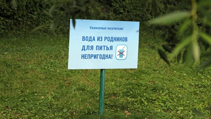 Ростовчан предупредили, что пить из родников нельзя