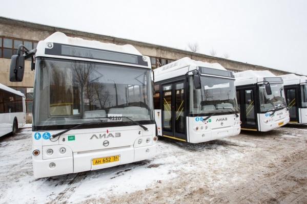В каких снегах заблудились автобусы, остаётся только догадываться