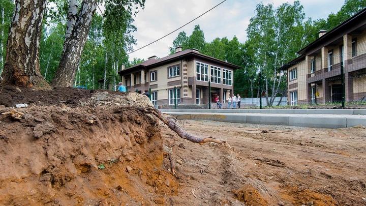 «Нас сталкивают лбами»: жители таунхауса в Челябинске бьются за берёзы под окнами