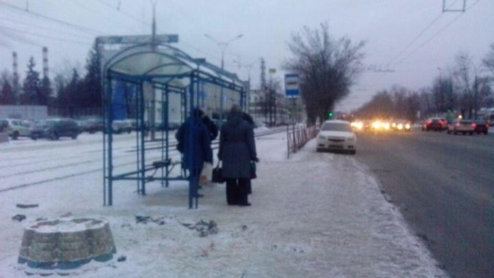 На остановках Ярославля могут появиться кофейни