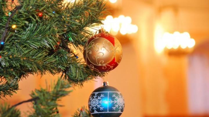 Рок-фестиваль FROST, гиганты ледникового периода и Новый год: планируем выходные в Архангельске