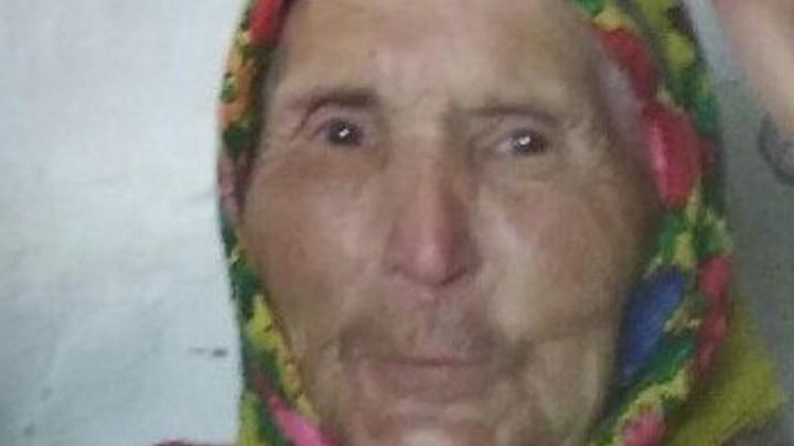 Волонтеры отправятся на поиски 81-летней пенсионерки, пропавшей пять дней назад в Бардымском районе