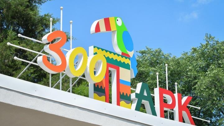 Ростовский зоопарк попал в десятку самых популярных в стране
