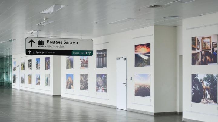Воздушные змеи, коза и Самарская Лука: в аэропорту Курумоч открыли выставку местных фотографов