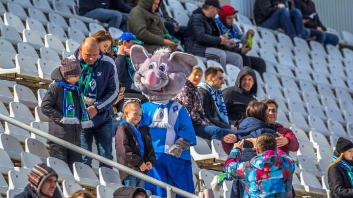 В Самаре выберут оракула для предсказания результатов жеребьевки ЧМ-2018