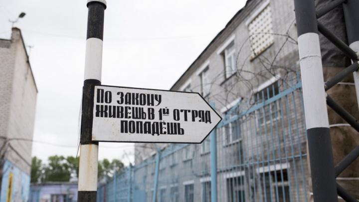 Пересчитали заключённых: кто сидит в ярославских тюрьмах