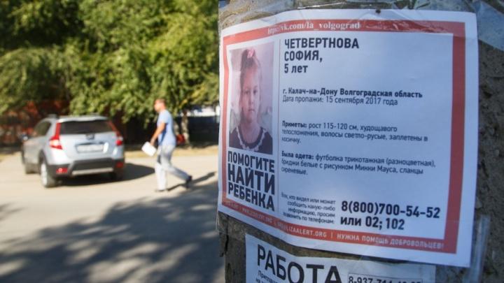 В похищении девочки в Калаче-на-Дону подозревают странного человека