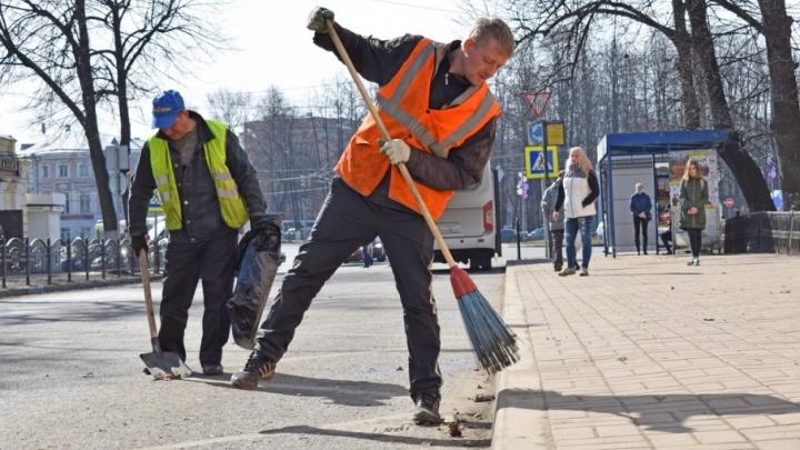 Мэрия Ярославля пообещала за неделю собрать весь мусор в городе