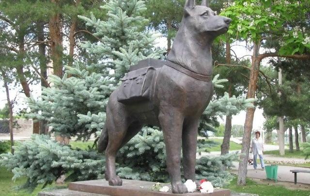 Памятник собакам – истребителям танков