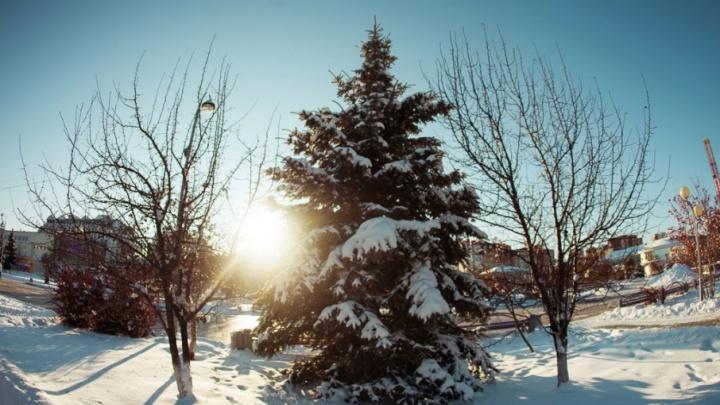 Декабрьский морозец: какая погода ждёт тюменцев в выходные