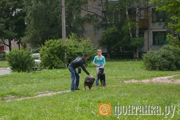 Фото Виталия Трофимова