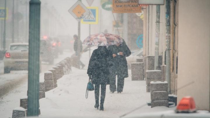 Март не в курсе, что он весна: в субботу и воскресенье в Ростове будет идти снег
