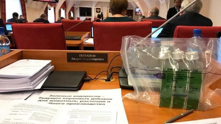 Депутат принес на заседание ярославской облдумы зеленые водоросли