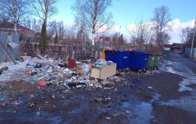 Поселок Ярославского района завалило мусором: фоторепортаж