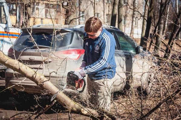 Ярославцы участвуют в новом флешмобе в социальных сетях