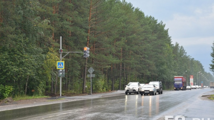 Пермский ученый придумал проект улучшения транспортной системы России