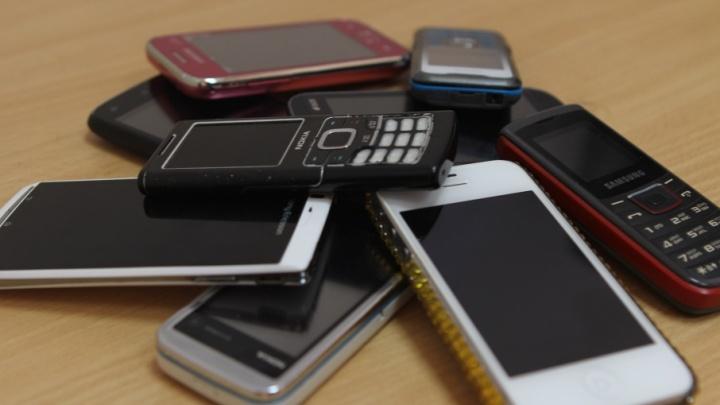 В Тобольске осудили двух гастролеров из Екатеринбурга, укравших телефонов на полтора миллиона рублей
