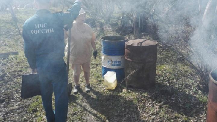 Ярославцев будут штрафовать за прогулки по лесу и пикники на даче